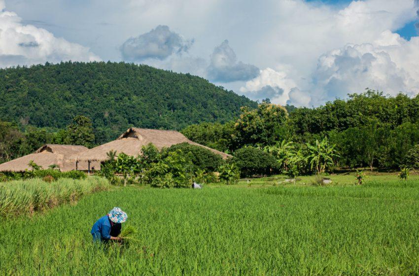 מחוז מגווה מרכז בורמה