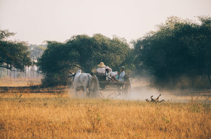 מחוז קצ'ין צפון בורמה