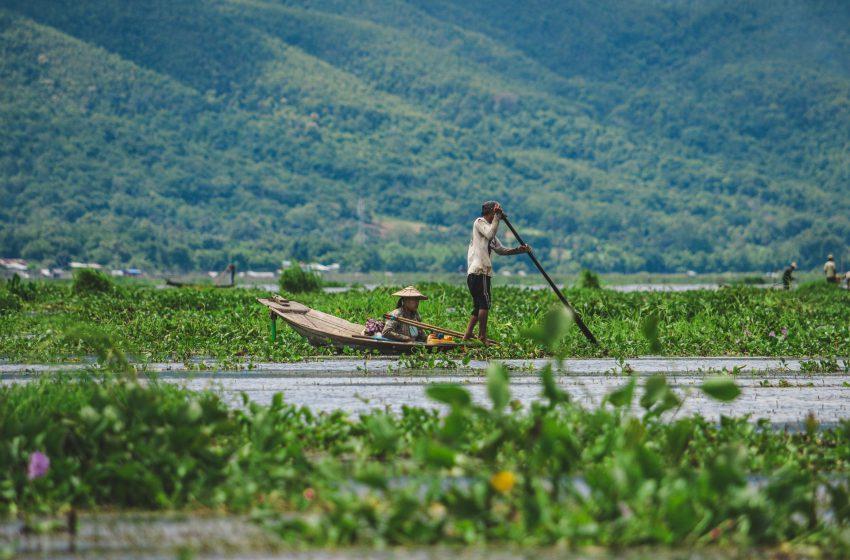 מחוז ראכין מערב בורמה